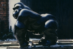 Gorilla, Belgian Fossil Marble - Private Client - 1989