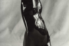 Female Torso, Belgian Black Marble
