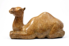 Camel, Bronze edition of 9